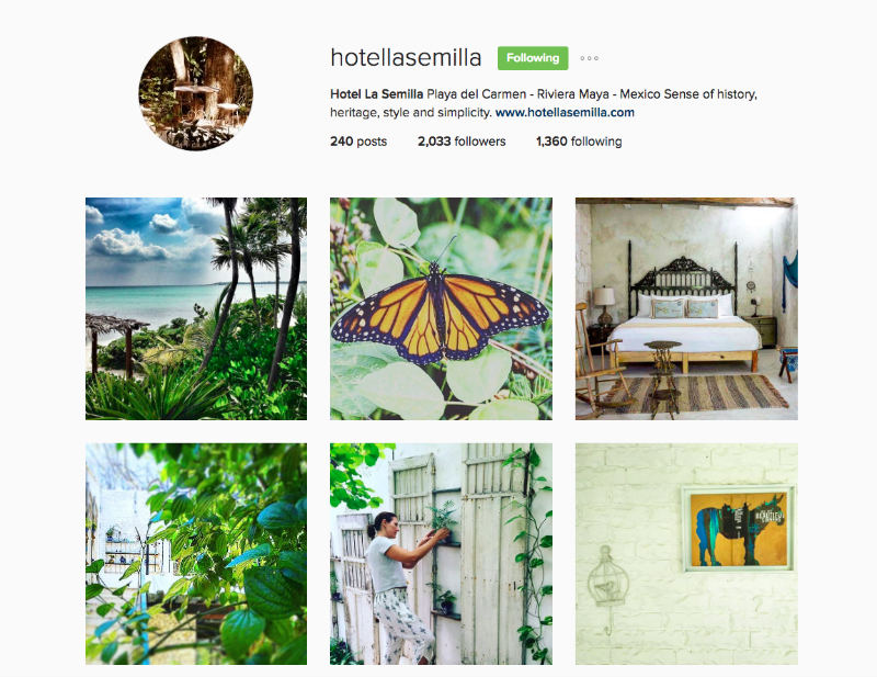 La Semilla: Instagram For Tourism Marketing